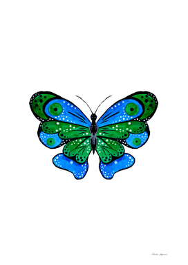 Green and Blue Butterfly