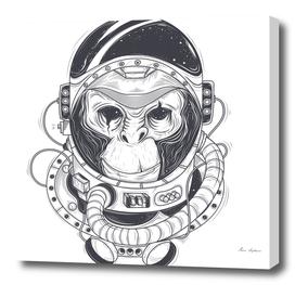 monkey astronot