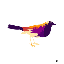 Bird flat