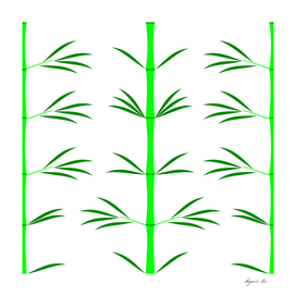 green bamboo white