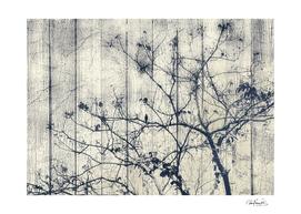 Black and White Botanical Motif Artwork