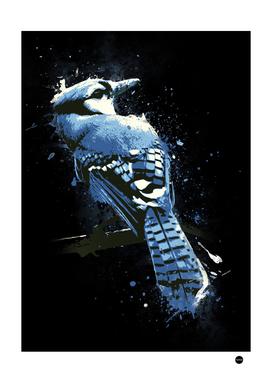 Eternal Gaze Bird Design