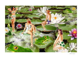 A Day At The Lily Pad