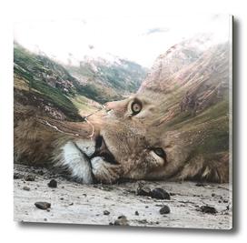 Lion valley