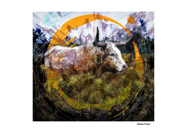 Longhorn Animals Nature - Colored