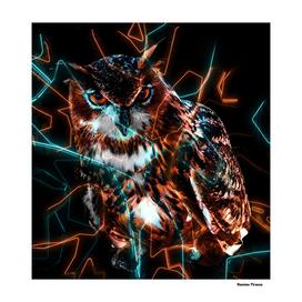 Owl Animals Nature - Electric Neon