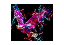 Eagle Animals nature Colored Neon Electric Street Art