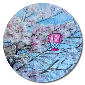 Sakura - Japan - Springfestival