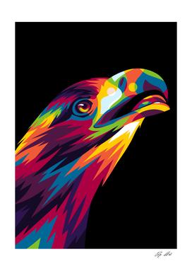 Falcon Bird of Prey