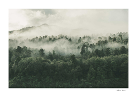 In My Other World, The Heart Of My Heart, Mountain Fog