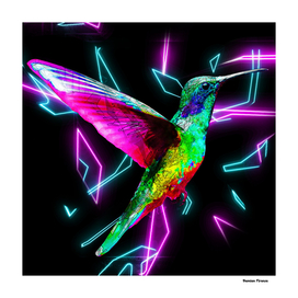 Humming-bird Animals Nature Colored Neon Art
