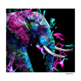Elephant Animals Nature - Colored Electric neon