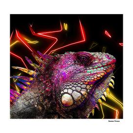 Lizard Iguana Animals Nature - Colored Neon Electric