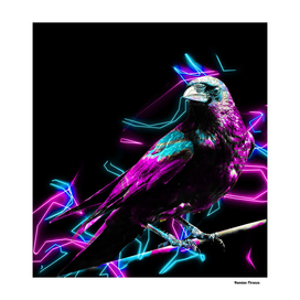 Crow Birds Animals Nature - Colored Blue Pink