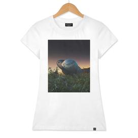 Saturn Garden