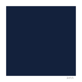 Midnight Express | Beautiful Solid Interior Design Colors