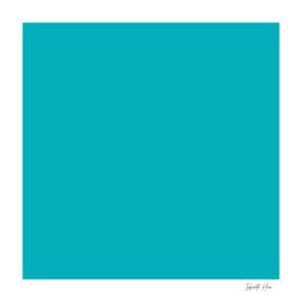 Iris Blue   Beautiful Solid Interior Design Colors