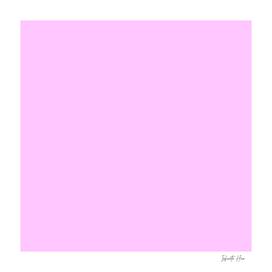 Snuff | Beautiful Solid Interior Design Colors