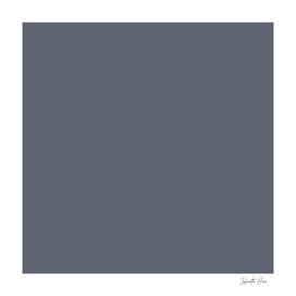 Shuttle Grey   Beautiful Solid Interior Design Colors