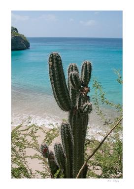 Tropical Cactus Ocean Beach Vibes #1 #tropical #wall #art