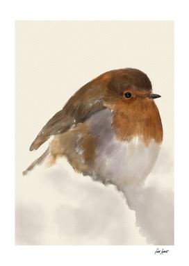 Snow and Bird