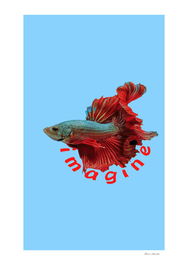 Imagine Gladiator Fish Light Blue