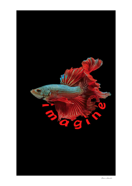 Imagine Fighter Fish Black