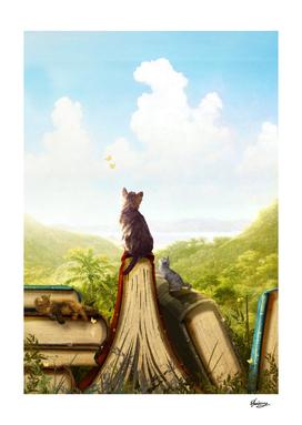 Feline Stories
