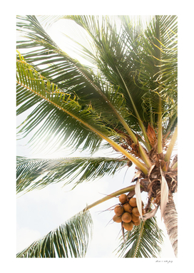 Palm Tree Tropical Vibes #1 #tropical #wall #decor #art