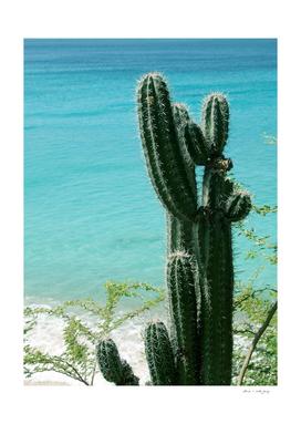Tropical Cactus Ocean Beach Vibes #2 #tropical #wall #art