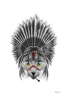 chiefcat