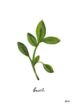 Herbs No.2 Basil