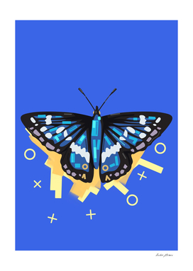 Blue butterfly in blue background