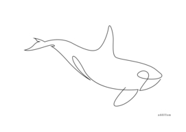 orca - one line drawing
