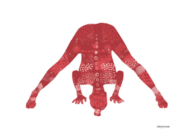Prasarita Padottanasana in Red