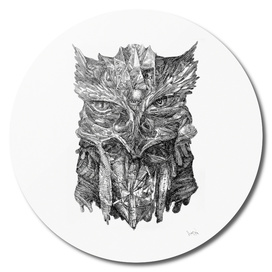 Wisdom - Owl