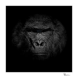 Studious Gorilla Solves Fermi's Paradox