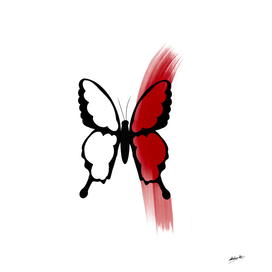 Butterfly with red