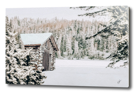 Wooden house in a pine forest in winter.