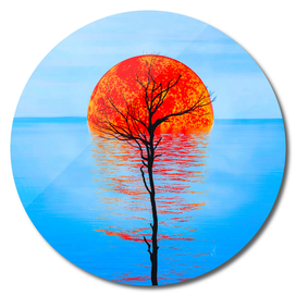 Dry tree against the background of the drowning sun.