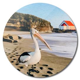 Pelican on the beach.