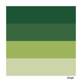 70s color palette - green retro color scheme
