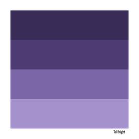 70s color palette - purple retro color scheme