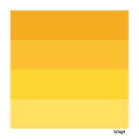 70s color palette - yellow retro color scheme