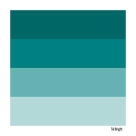 70s color palette - teal retro color scheme