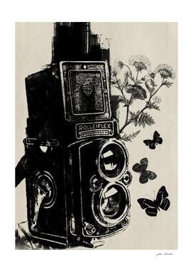 Capturing life through lens