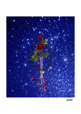 A rose in space. NASA