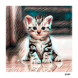 Cute kitten waiting for love and affection