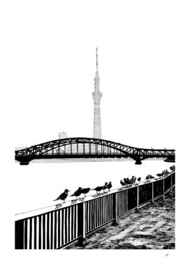 Sumida bridge view