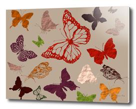 Autumn butterflys